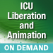 2017 ICU Liberation and Animation On Demand