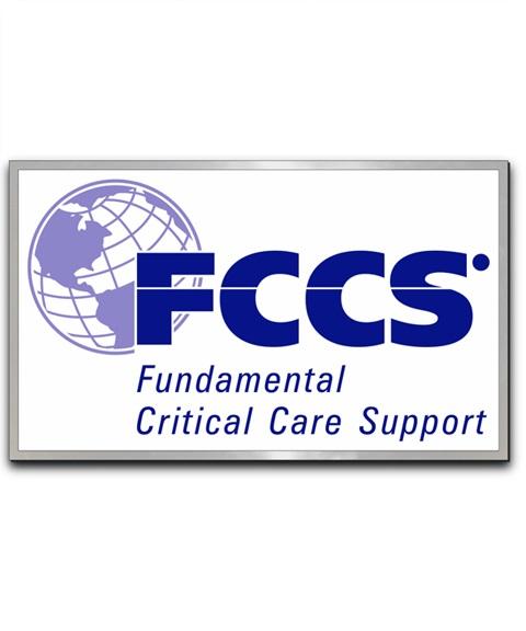 FCCS Lapel Pin