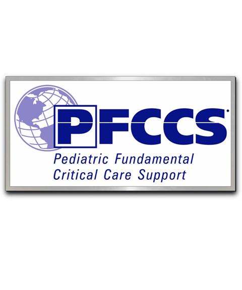 PFCCS Lapel Pin